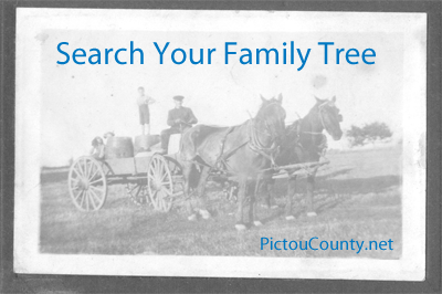 How to Search Your Family Tree